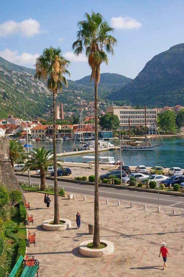 Paisagem de Sunny Mediterranean Montenegro, cidade de Kotor imagens de stock royalty free