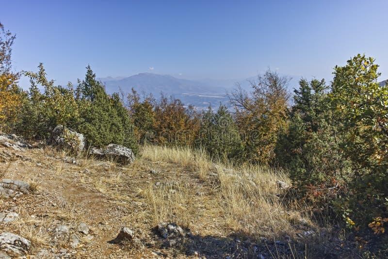 Paisagem de surpresa do outono da montanha de Ruen, Bulg?ria fotos de stock royalty free