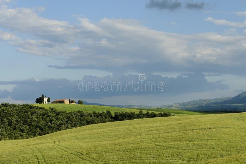 Paisagem de Toscânia, Itália, Europa imagens de stock royalty free