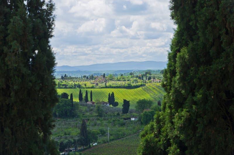 Paisagem de Toscânia quadro por duas árvores de cipreste enormes, perto de San Gimignano imagens de stock royalty free