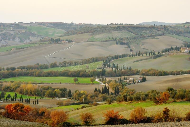 Paisagem de Tuscan e estrada secundária com árvores de cipreste, Toscânia, Itália imagens de stock