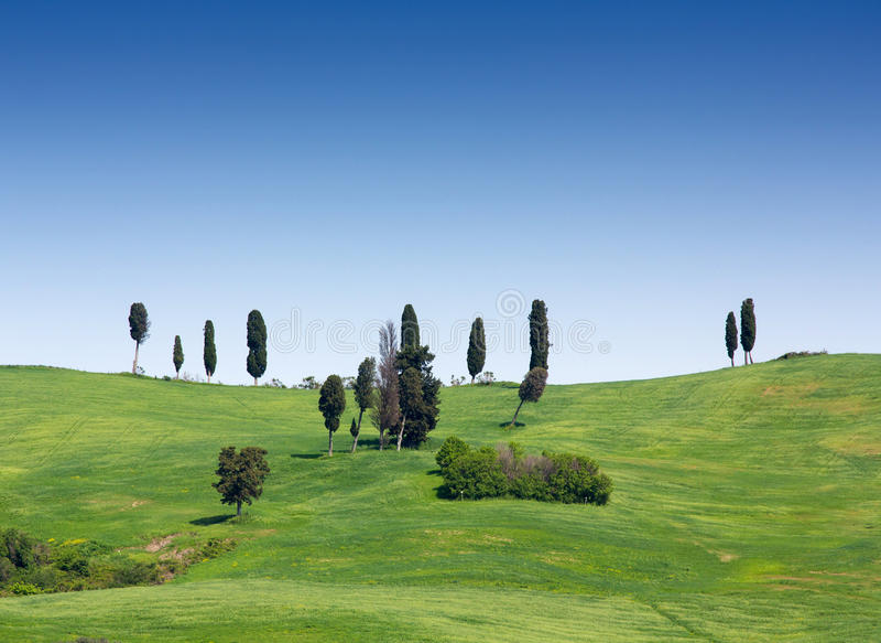 Paisagem de Tuscan perto de Volterra em Itália foto de stock