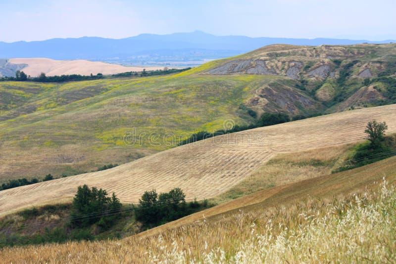 Paisagem de Tuscan, Siena, Italy fotografia de stock