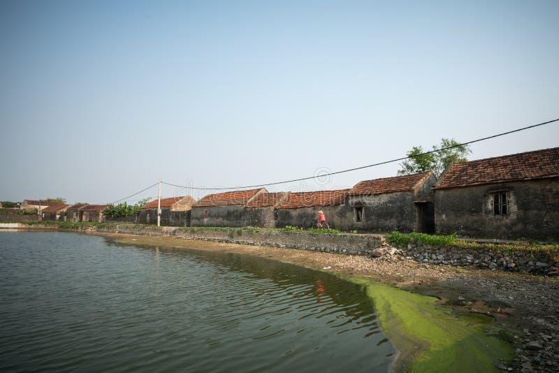 Paisagem de Vietname com lagoa e as casas envelhecidas velhas e ciclismo da mulher na estrada na vila foto de stock