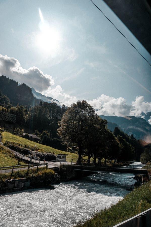 A paisagem disparou de um rio e de uma ponte minúscula com as árvores claras do céu e mais forrest imagem de stock
