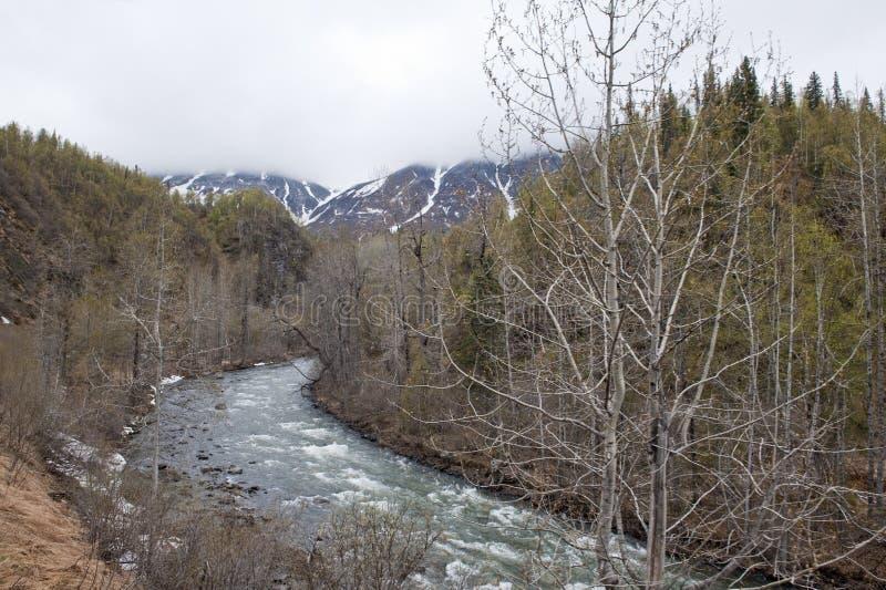 Paisagem do Alasca fotografia de stock royalty free