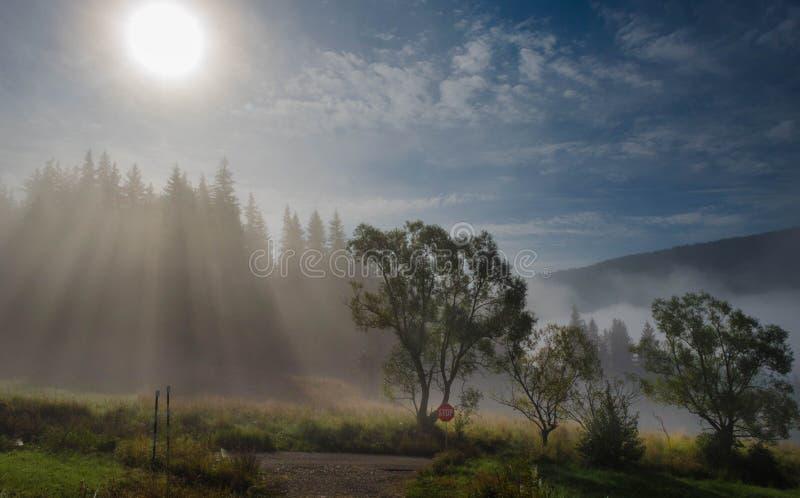 Paisagem do amanhecer foto de stock
