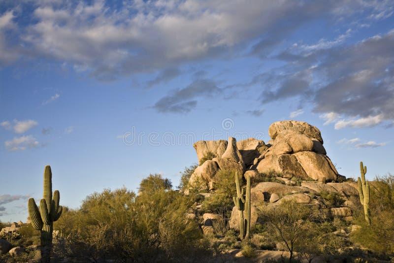 Paisagem do Arizona foto de stock royalty free