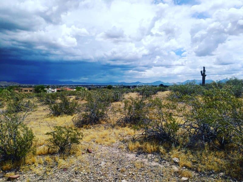 Paisagem do Arizona imagens de stock