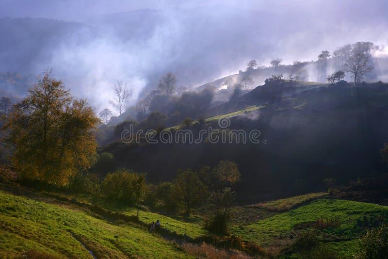 Paisagem do campo com myst e névoa fotografia de stock