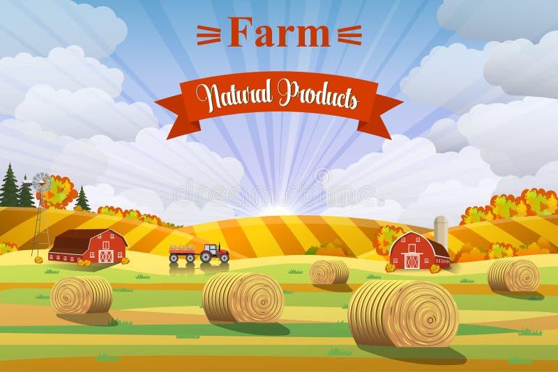Paisagem do campo com os monte de feno em campos ilustração stock