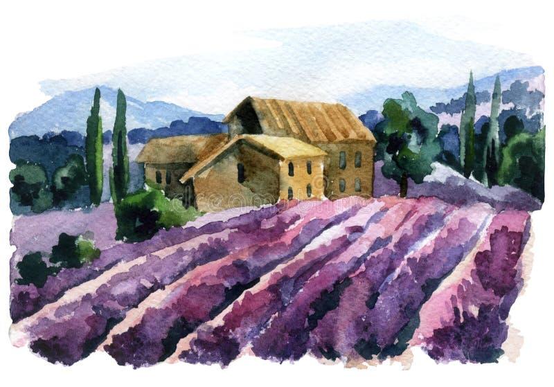 Paisagem do campo da alfazema da aquarela verão em Provence, França ilustração do vetor