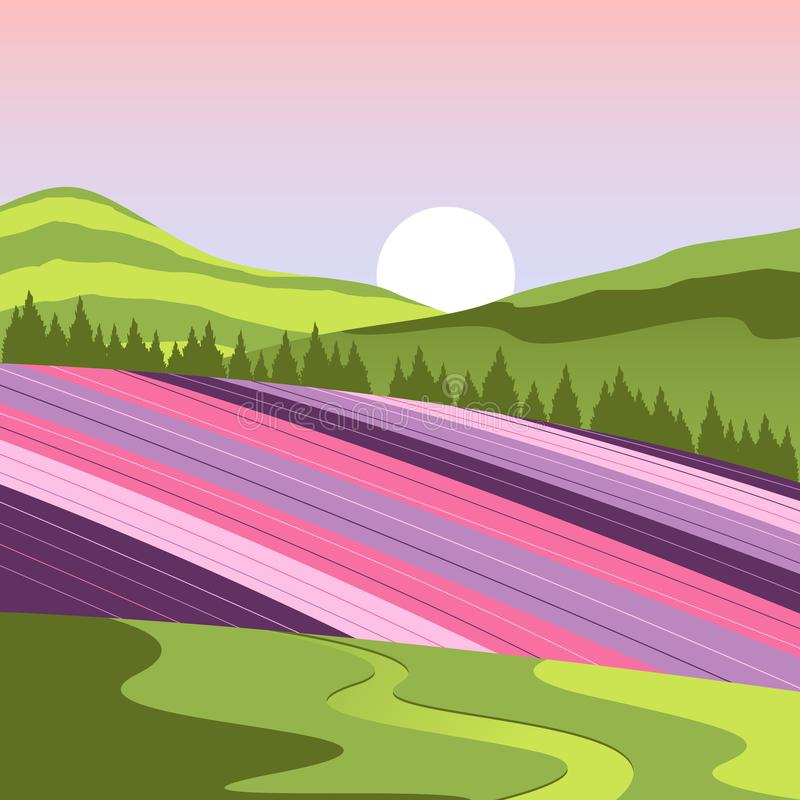 Paisagem do campo de flor do Hokkaido de Japão completamente ilustração royalty free