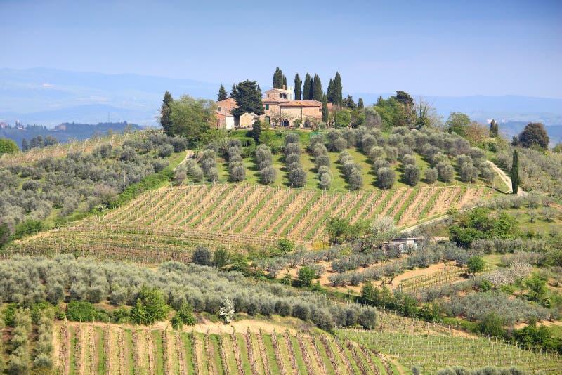 Paisagem do campo de Tuscan imagem de stock royalty free