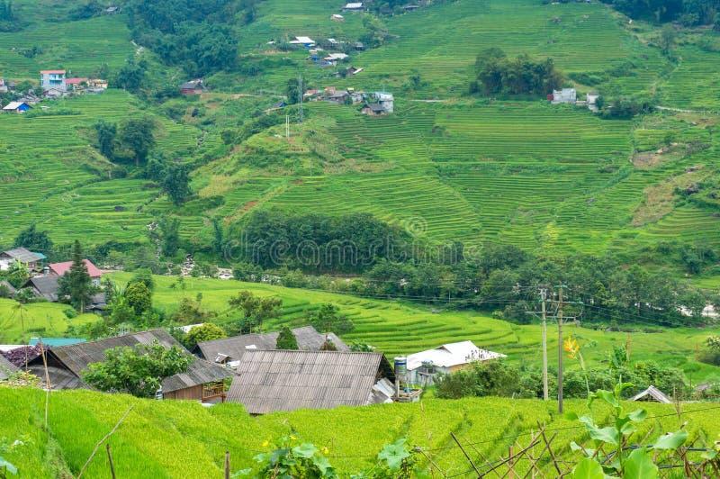 Paisagem do campo de Vietname rural fotos de stock