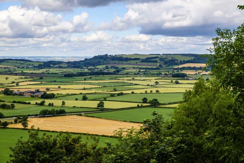 Paisagem do campo de Yorkshire foto de stock