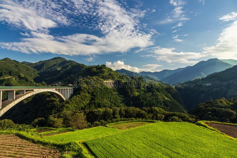 Paisagem do campo do arroz e ponte do arco em Takachiho, Miyazaki, Japão fotografia de stock