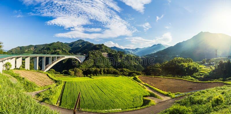 Paisagem do campo do arroz e ponte do arco em Takachiho, Miyazaki, Jap foto de stock