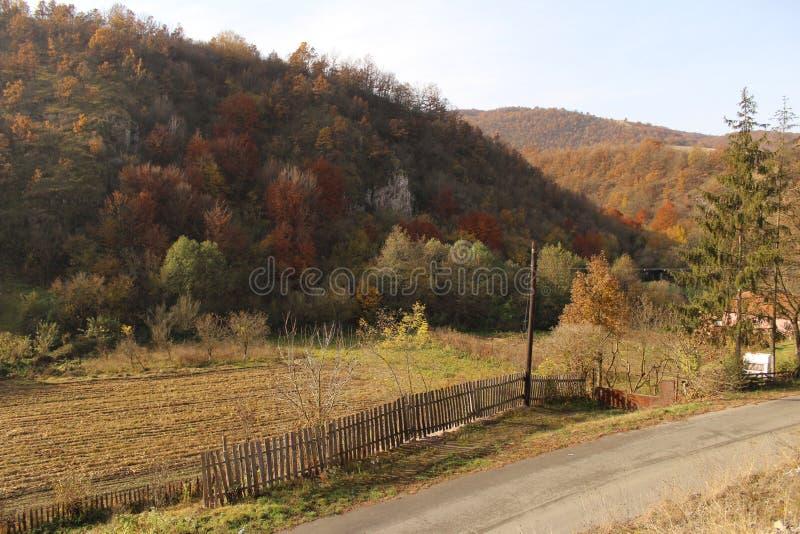 Paisagem do campo no outono imagem de stock
