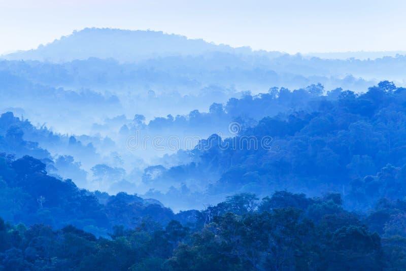 A paisagem do cenário da cordilheira na manhã do inverno, delicadamente névoa cobre a floresta tropical Nam Não, Tailândia imagens de stock royalty free