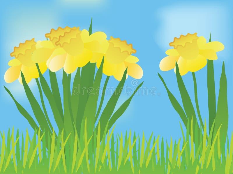Paisagem do Daffodil ilustração royalty free