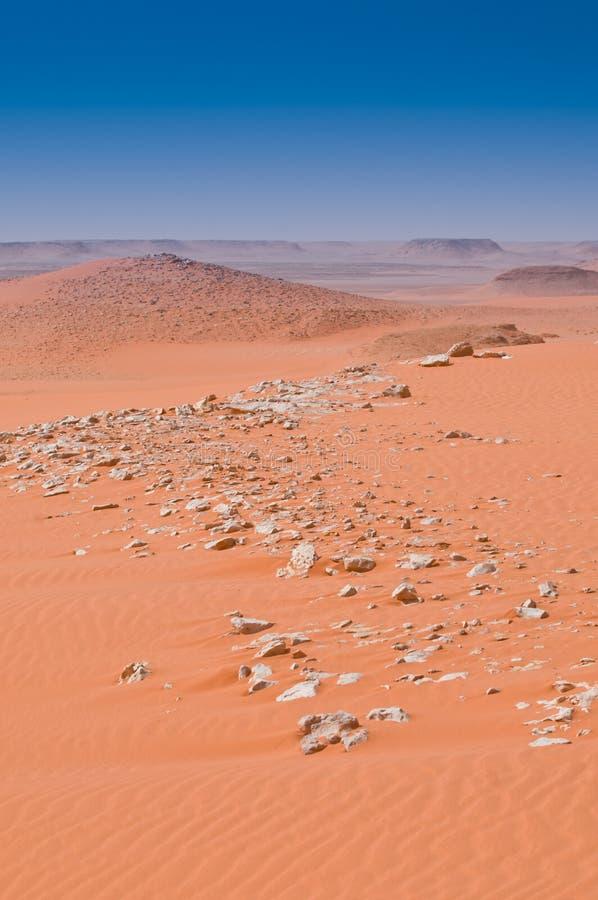 Paisagem do deserto fotos de stock