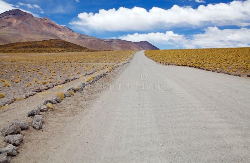 Paisagem do deserto de Atacama, o Chile imagem de stock