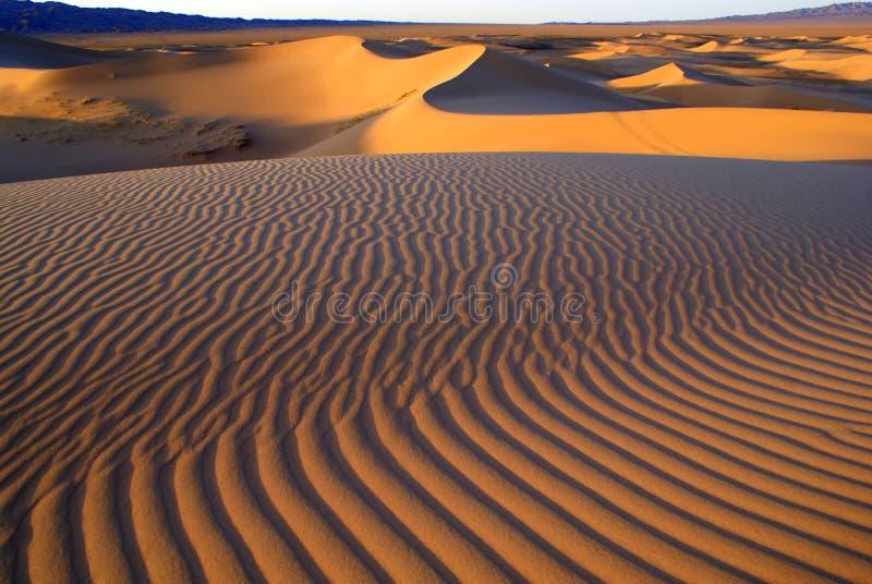 Paisagem do deserto, deserto de Gobi, Mongólia fotografia de stock