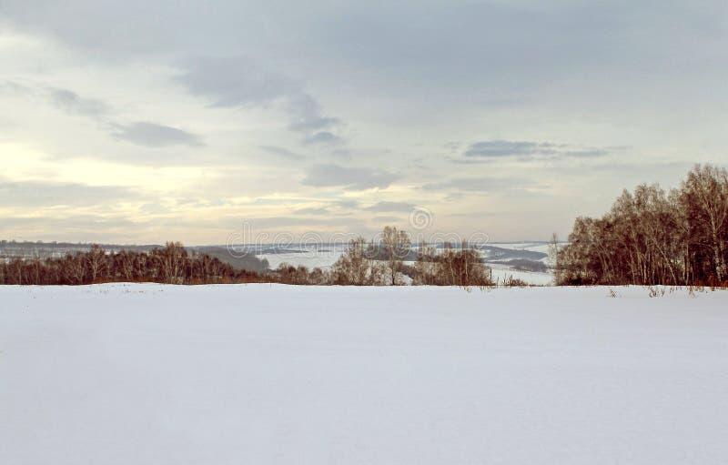 Paisagem do inverno - árvores gelados na estrada de floresta nevado em uma floresta maravilhosa do inverno imagem de stock