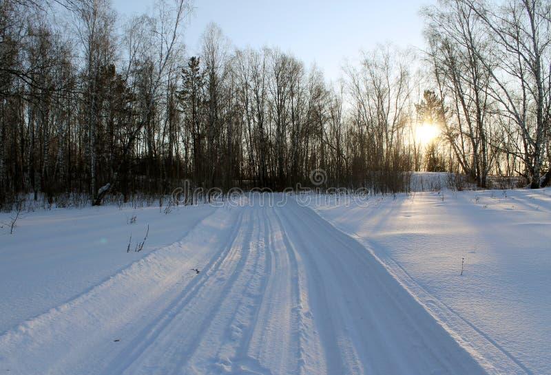 Paisagem do inverno - árvores gelados na estrada de floresta nevado em uma floresta maravilhosa do inverno fotografia de stock