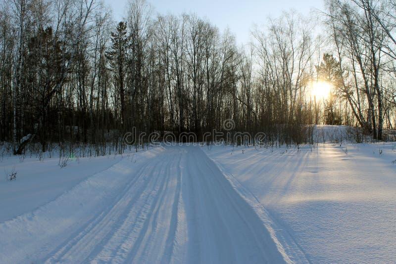 Paisagem do inverno - árvores gelados na estrada de floresta nevado em uma floresta maravilhosa do inverno foto de stock royalty free