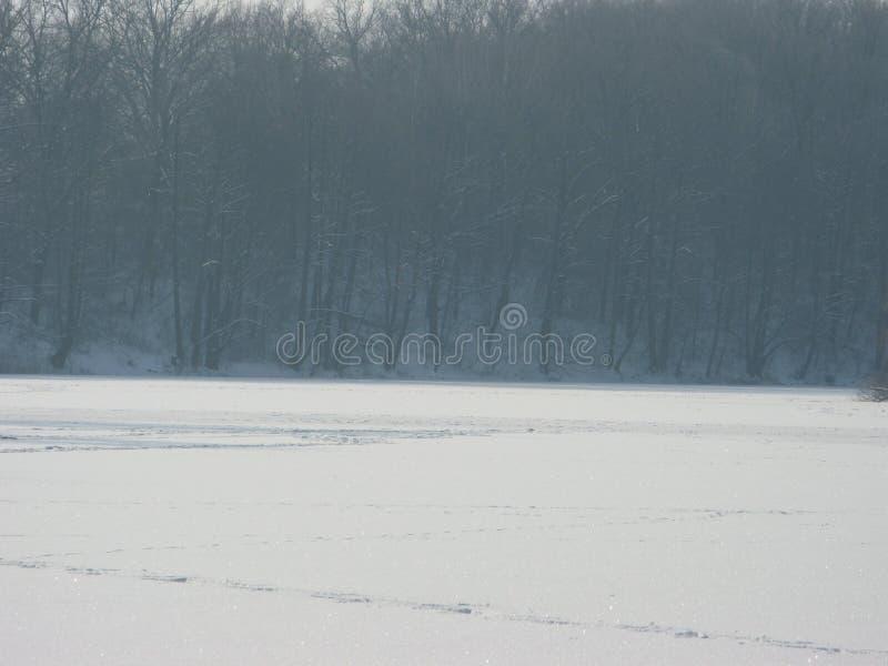 Download Paisagem do inverno imagem de stock. Imagem de costas - 107526369