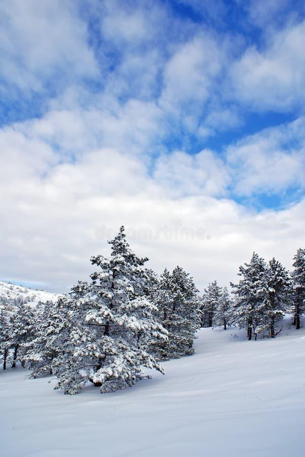 Download Paisagem do inverno foto de stock. Imagem de país, nave - 12800176