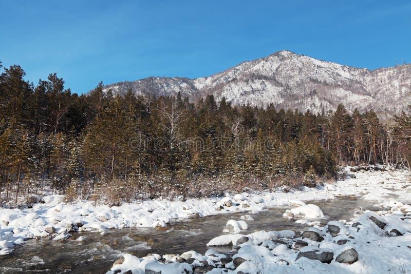 Download Paisagem do inverno imagem de stock. Imagem de geada - 26503625