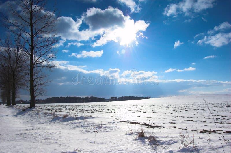 Download Paisagem do inverno imagem de stock. Imagem de nuvem, paisagem - 533123