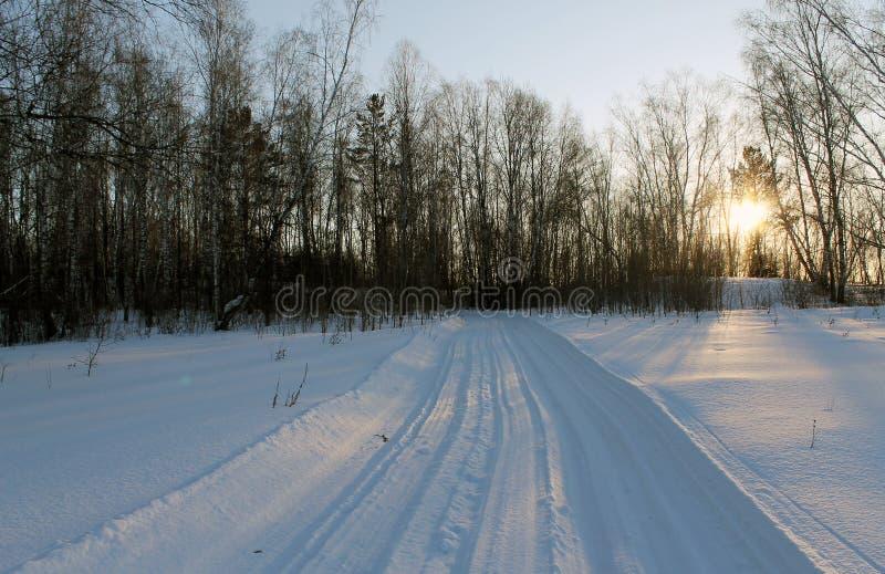 Paisagem do inverno - as árvores gelados na estrada de floresta nevado em um inverno bonito da floresta maravilhosa do inverno aj fotos de stock