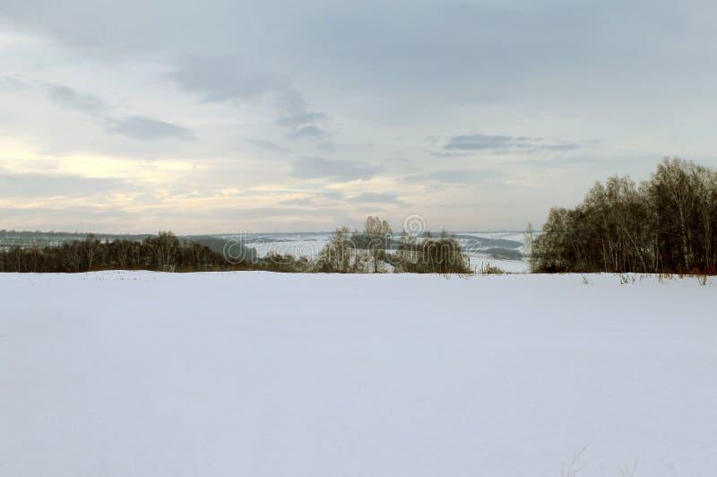 Paisagem do inverno - as árvores gelados na estrada de floresta nevado em um inverno bonito da floresta maravilhosa do inverno aj fotografia de stock