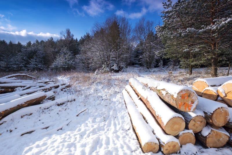 Paisagem do inverno coberta pela neve fotos de stock royalty free