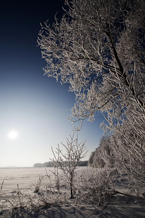 Download Paisagem Do Inverno Com árvores Geadas E Rime Imagem de Stock - Imagem de clima, rural: 12802075