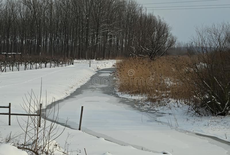 A paisagem do inverno com canal congelado e neva toda ao redor fotografia de stock