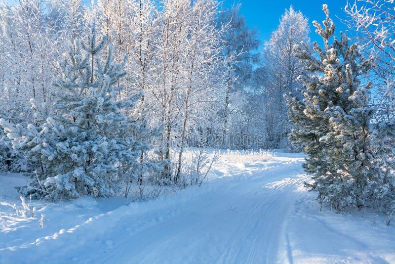 Paisagem do inverno com a estrada imagens de stock royalty free