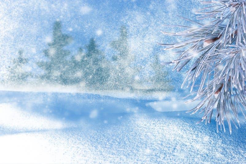 Paisagem do inverno com neve Fundo do Natal com filial do abeto fotos de stock