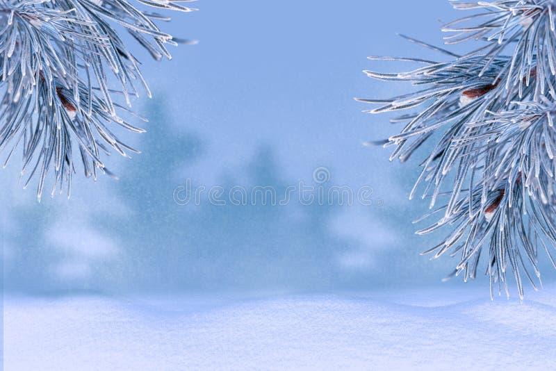 Paisagem do inverno com neve Fundo do Natal com filial do abeto imagens de stock