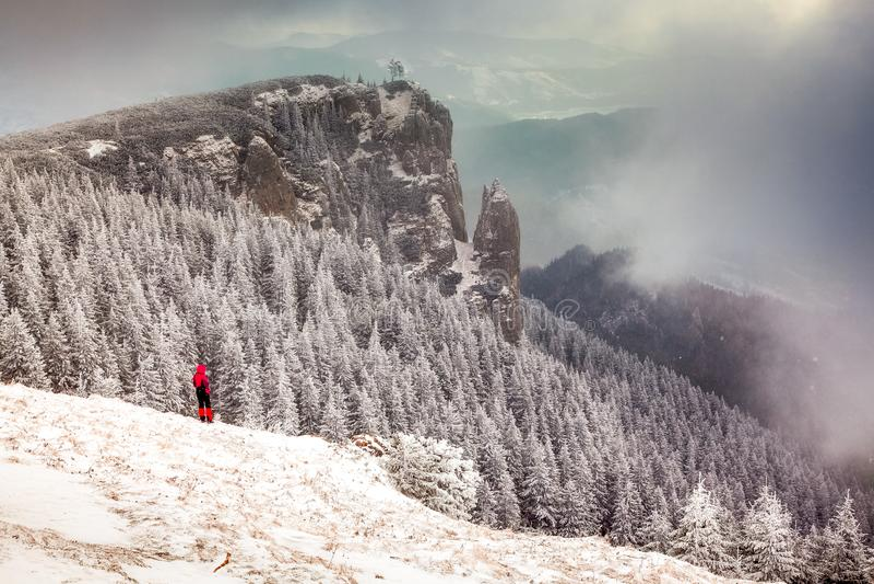 paisagem do inverno com os abeto nevados nas montanhas foto de stock royalty free