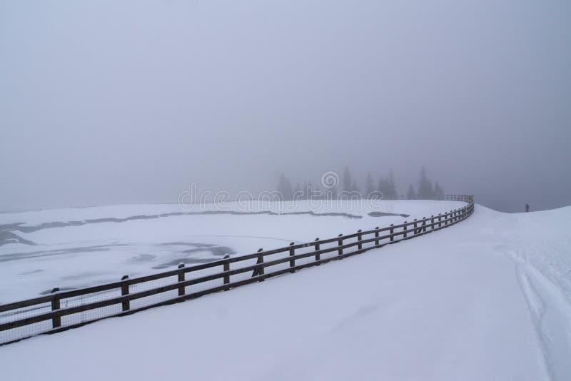 Paisagem do inverno com uma cerca em um dia nebuloso imagem de stock