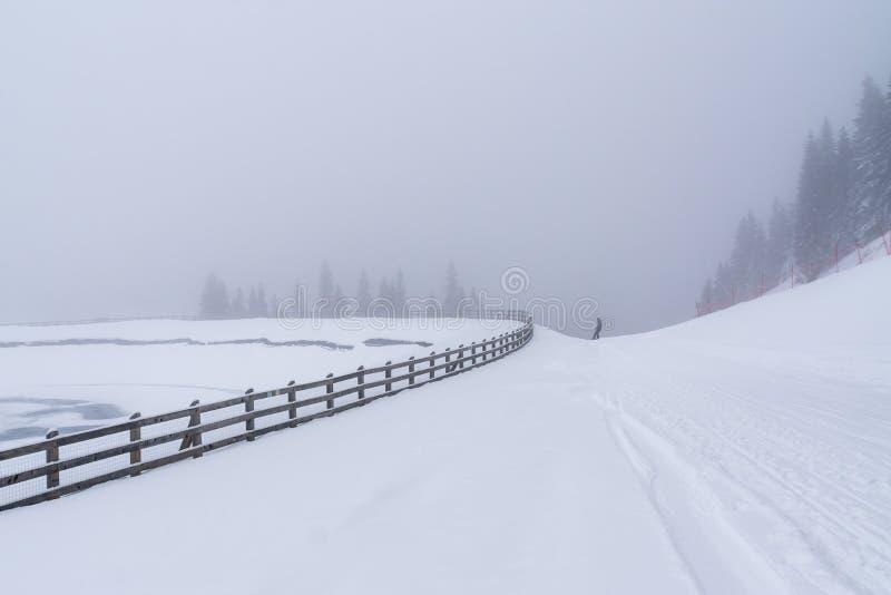 Paisagem do inverno com uma cerca em um dia nebuloso imagem de stock royalty free