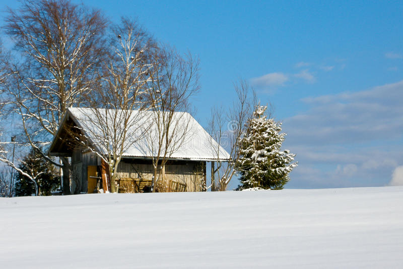 Paisagem do inverno da floresta e do campo foto de stock royalty free