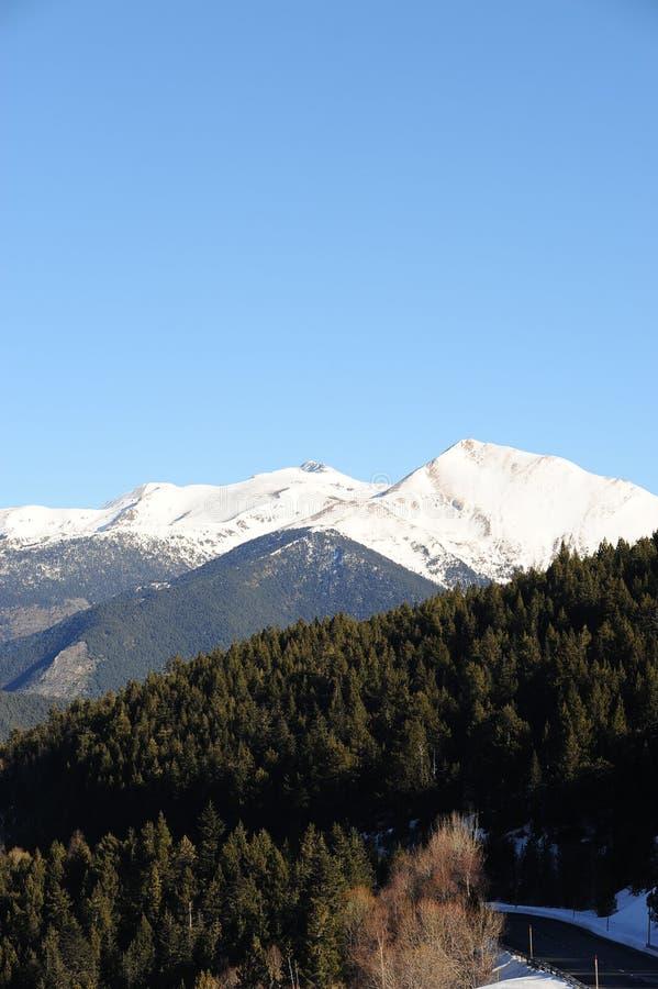 Paisagem do inverno de uma montanha coberta com a neve e coberto de vegetação com os abeto contra o céu azul - principado de Ando foto de stock