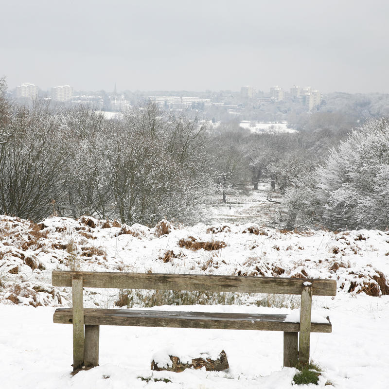 Paisagem do inverno do parque de Richmond imagem de stock royalty free