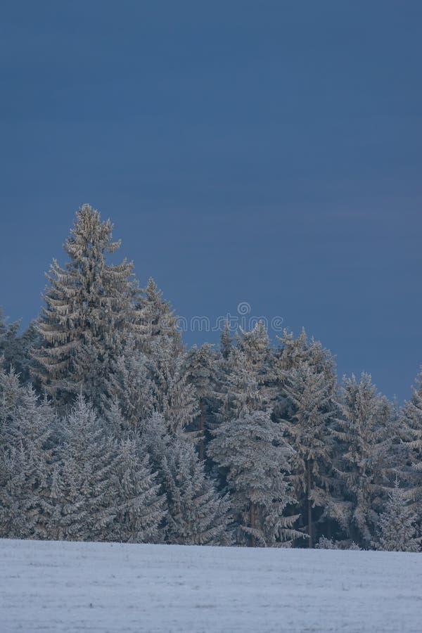 paisagem do inverno em Bo?mia sul, Rep?blica Checa imagens de stock
